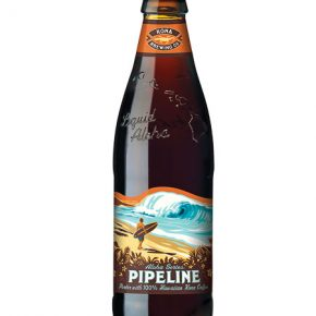 Kona Pipeline Porter Bottle