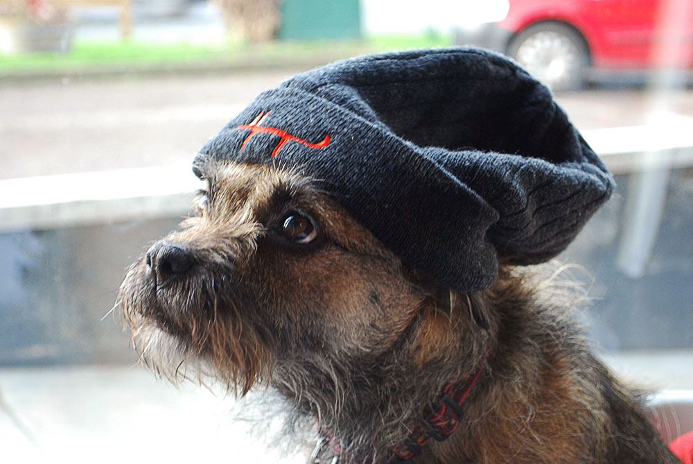 Charnwood Brewery Hat